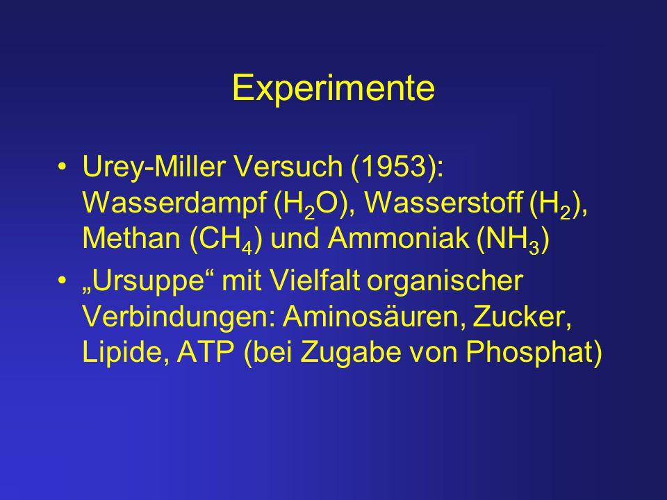 """Experimente Urey-Miller Versuch (1953): Wasserdampf (H 2 O), Wasserstoff (H 2 ), Methan (CH 4 ) und Ammoniak (NH 3 ) """"Ursuppe"""" mit Vielfalt organische"""