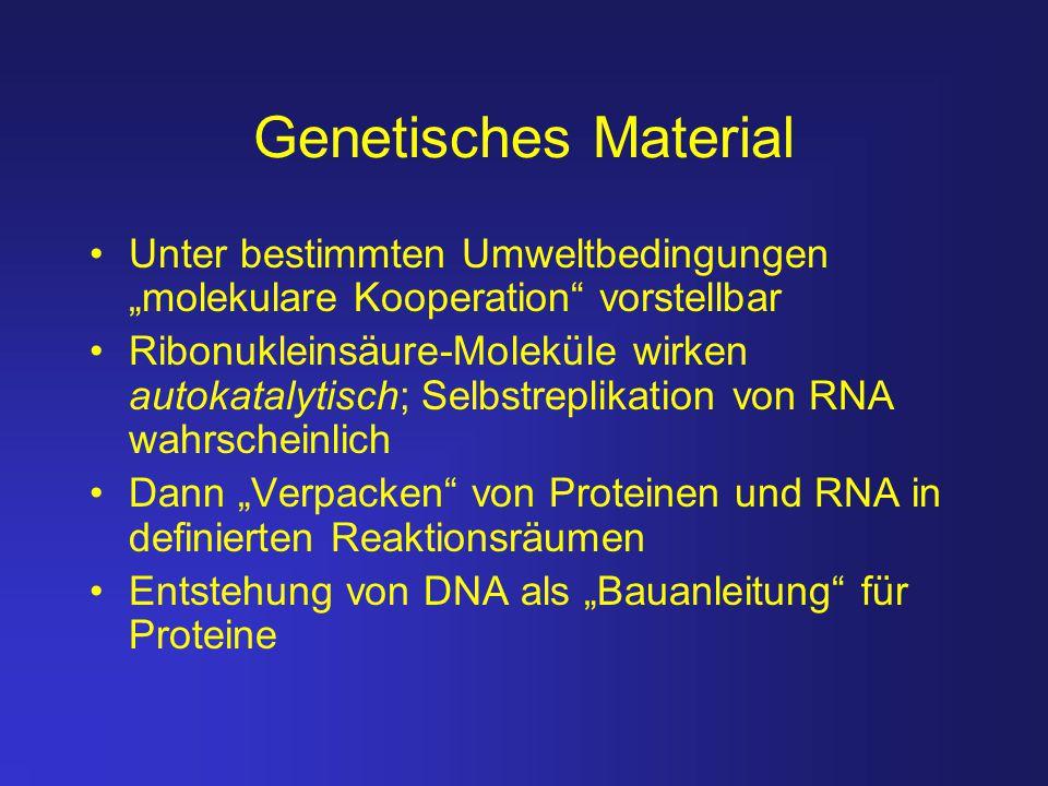 """Genetisches Material Unter bestimmten Umweltbedingungen """"molekulare Kooperation"""" vorstellbar Ribonukleinsäure-Moleküle wirken autokatalytisch; Selbstr"""