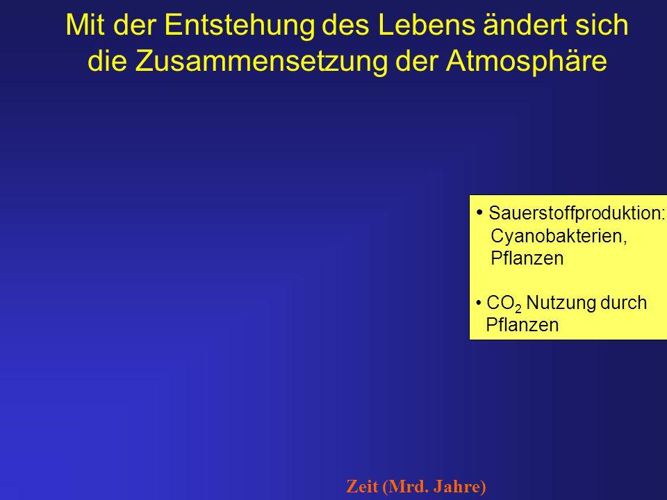 Mit der Entstehung des Lebens ändert sich die Zusammensetzung der Atmosphäre Sauerstoffproduktion: Cyanobakterien, Pflanzen CO 2 Nutzung durch Pflanze