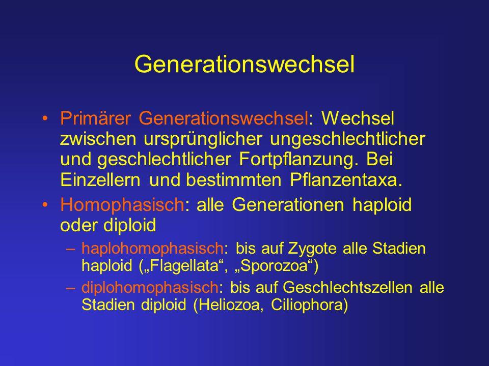 Generationswechsel Primärer Generationswechsel: Wechsel zwischen ursprünglicher ungeschlechtlicher und geschlechtlicher Fortpflanzung. Bei Einzellern