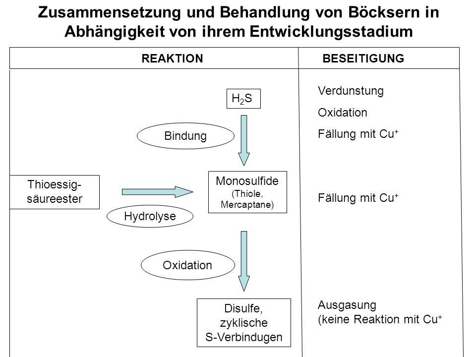 Zusammensetzung und Behandlung von Böcksern in Abhängigkeit von ihrem Entwicklungsstadium REAKTION BESEITIGUNG H2SH2S Monosulfide (Thiole, Mercaptane)