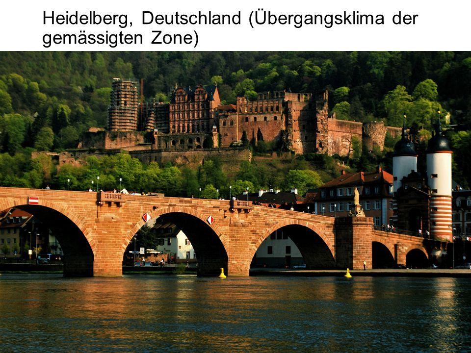 Heidelberg, Deutschland (Übergangsklima der gemässigten Zone)