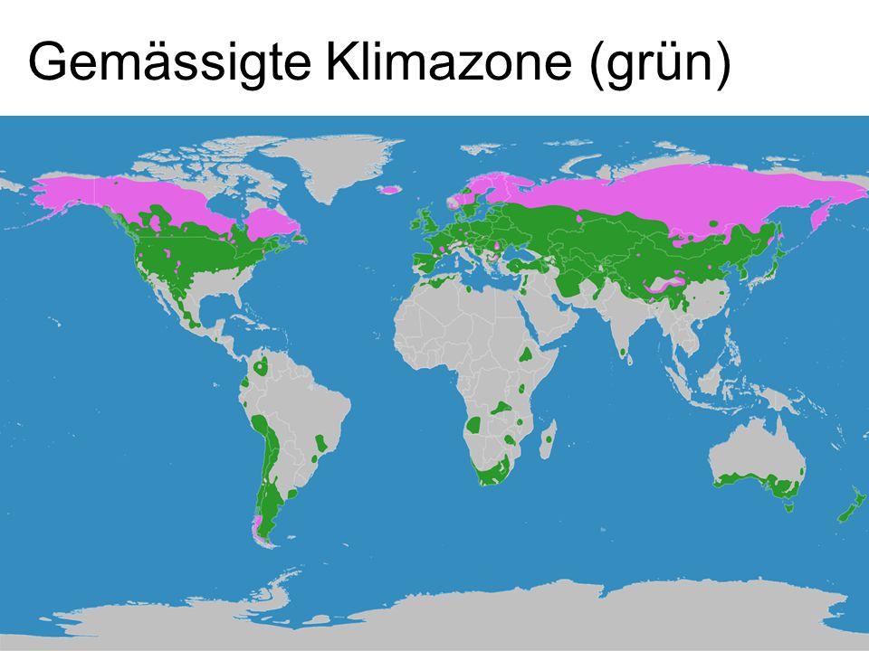 Gemässigte Klimazone (grün)