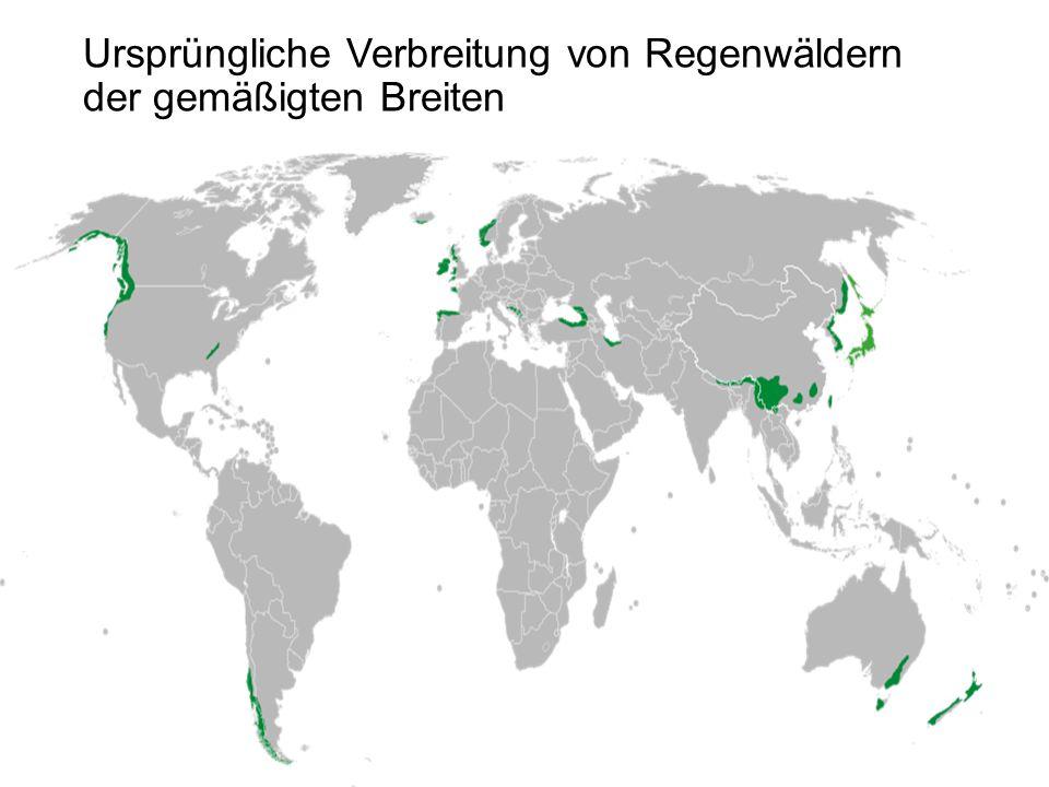 Ursprüngliche Verbreitung von Regenwäldern der gemäßigten Breiten