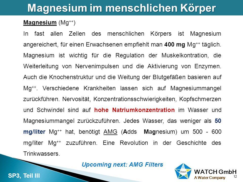 WATCH GmbH A Water Company Magnesium im menschlichen Körper 12 SP3, Teil III Magnesium (Mg ++ ) In fast allen Zellen des menschlichen Körpers ist Magn