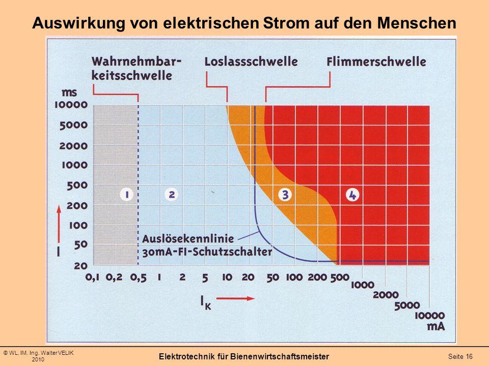 © WL. IM. Ing. Walter VELIK 2010 Elektrotechnik für Bienenwirtschaftsmeister Seite 16 Auswirkung von elektrischen Strom auf den Menschen