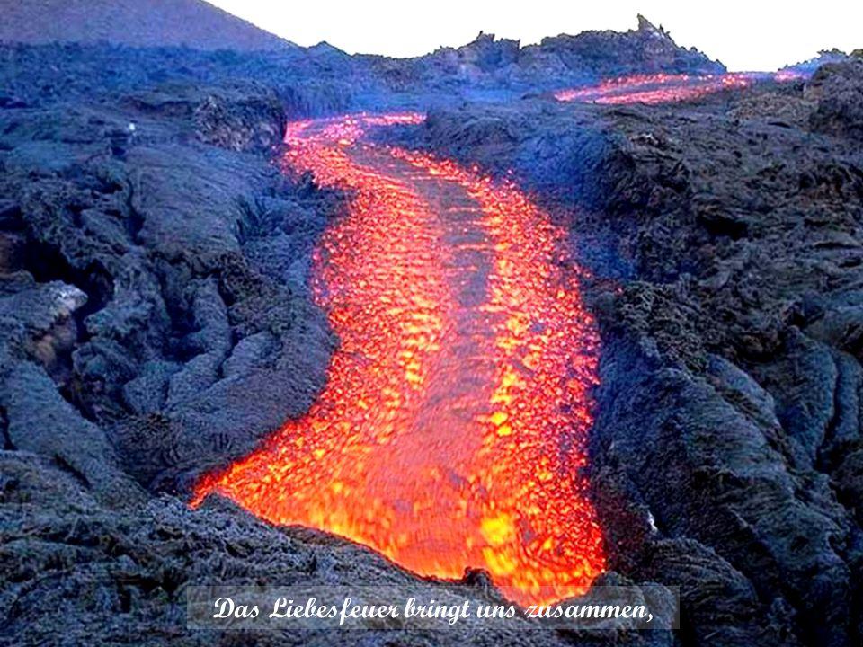 Das Herz steht doch in hellen Flammen, durchströmt von Wärme und vom Licht.