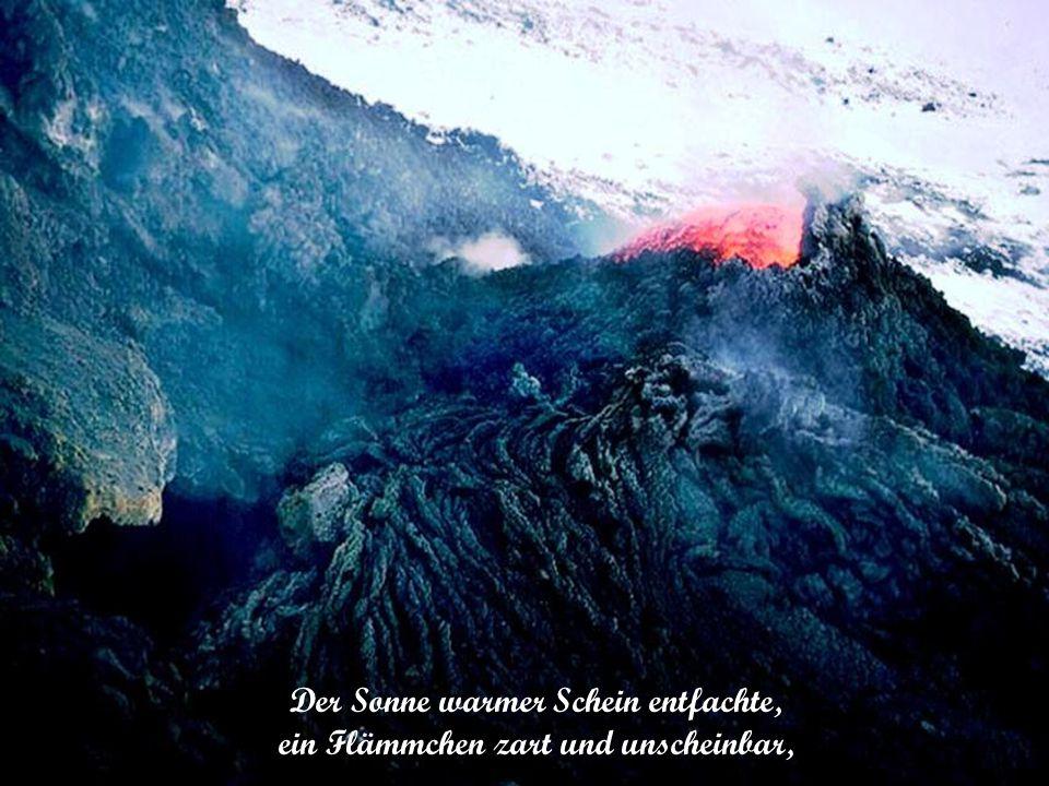 Man könnte ebenso gut Feuer im Schnee entzünden, wie den Versuch machen, das Feuer der Liebe mit Worten zu löschen.