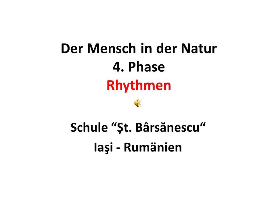 Der Mensch in der Natur 4. Phase Rhythmen Schule Șt. Bârs ă nescu Iaşi - Rumänien