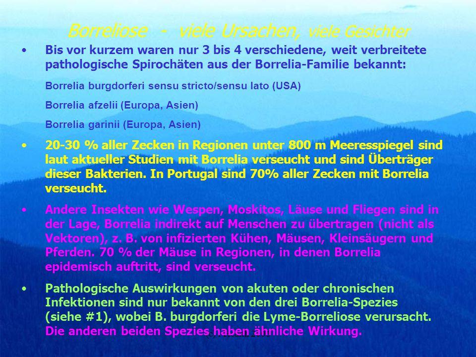 (c) i-Health 2006 Borreliose - viele Ursachen, viele Gesichter Bis vor kurzem waren nur 3 bis 4 verschiedene, weit verbreitete pathologische Spirochät