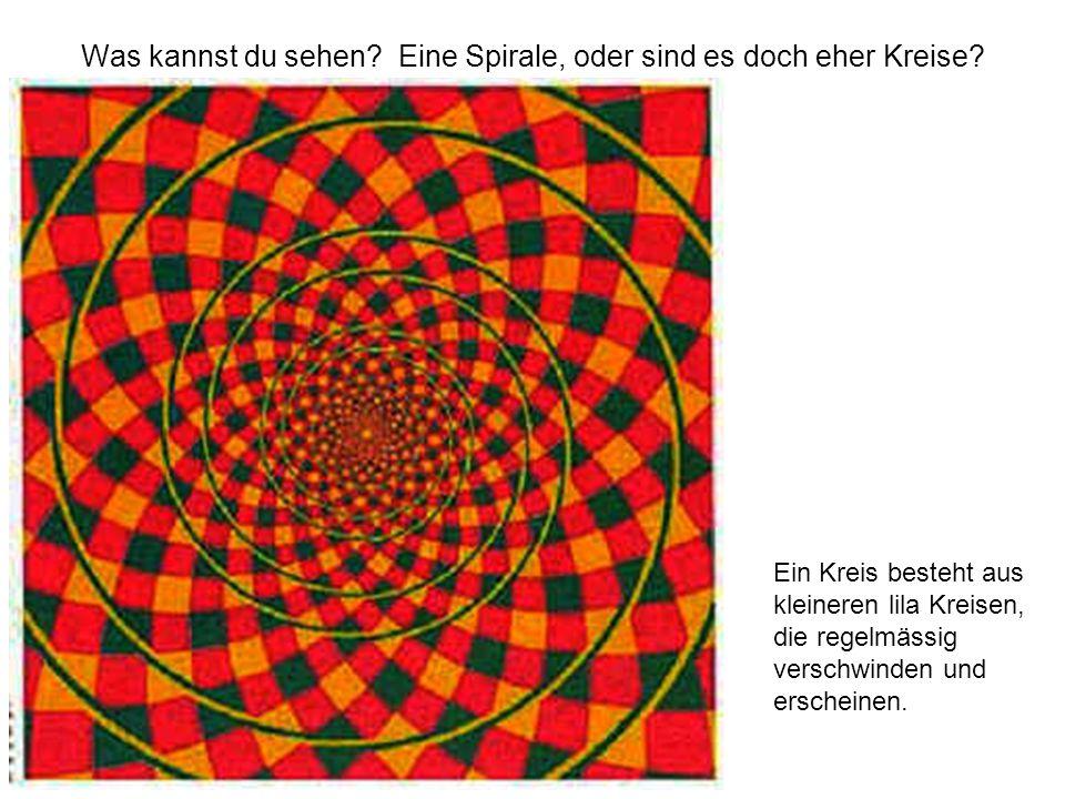 Was kannst du sehen? Eine Spirale, oder sind es doch eher Kreise? Ein Kreis besteht aus kleineren lila Kreisen, die regelmässig verschwinden und ersch