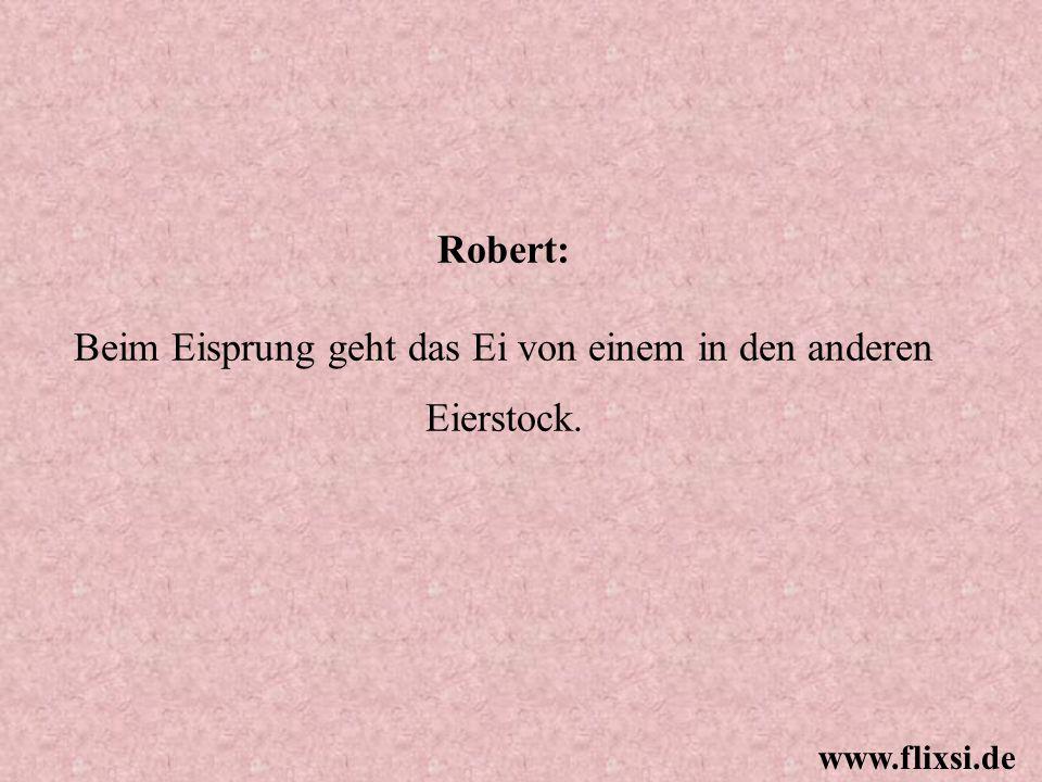 Robert: Beim Eisprung geht das Ei von einem in den anderen Eierstock. www.flixsi.de