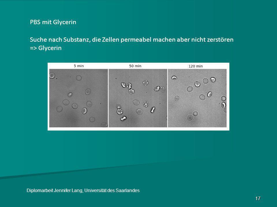 17 PBS mit Glycerin Suche nach Substanz, die Zellen permeabel machen aber nicht zerstören => Glycerin Diplomarbeit Jennifer Lang, Universität des Saar