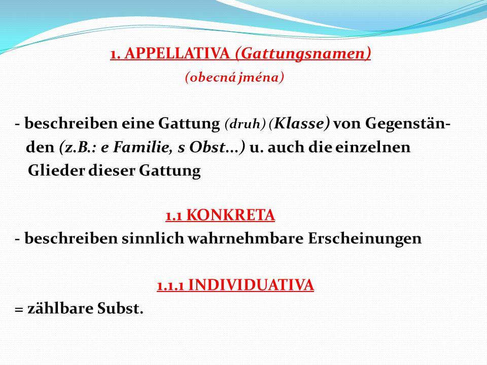 1. APPELLATIVA (Gattungsnamen) (obecná jména) - beschreiben eine Gattung (druh) ( Klasse) von Gegenstän- den (z.B.: e Familie, s Obst...) u. auch die