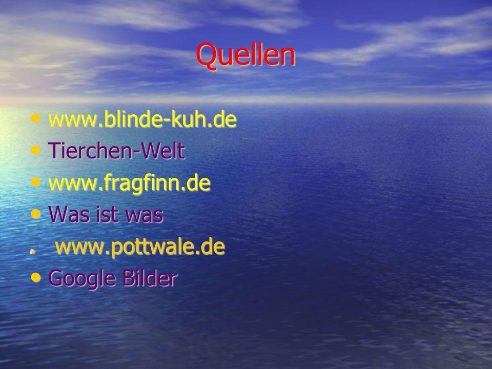 Quellen www.blinde-kuh.de www.blinde-kuh.de Tierchen-Welt Tierchen-Welt www.fragfinn.de www.fragfinn.de Was ist was Was ist was ● www.pottwale.de Google Bilder Google Bilder ●