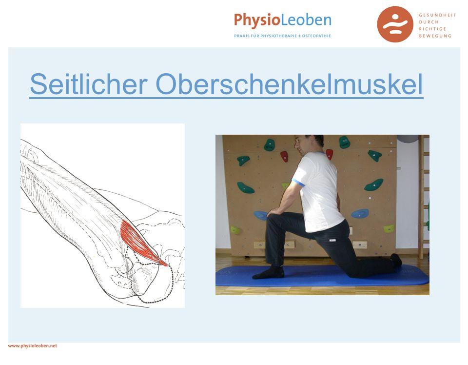Seitlicher Oberschenkelmuskel