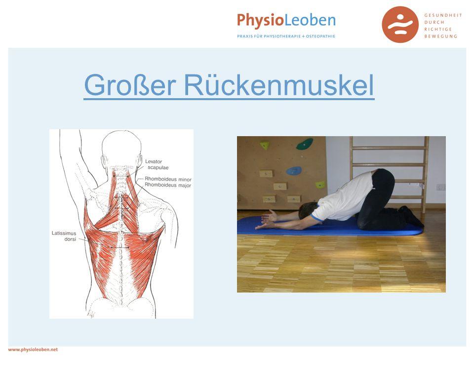 Großer Rückenmuskel