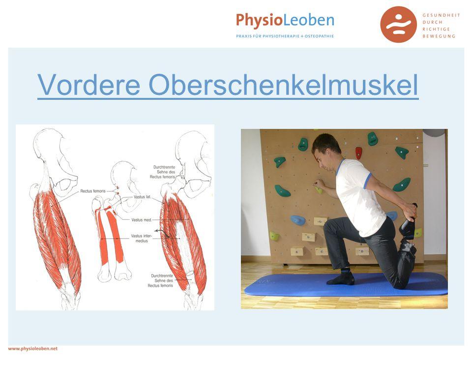 Vordere Oberschenkelmuskel