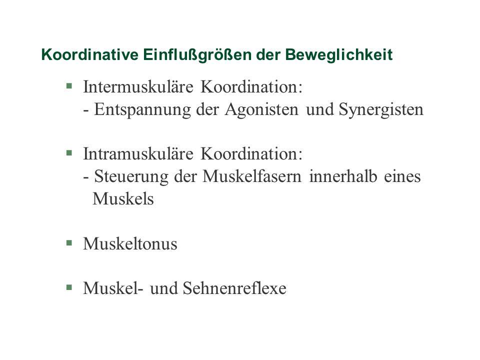 Koordinative Einflußgrößen der Beweglichkeit §Intermuskuläre Koordination: - Entspannung der Agonisten und Synergisten §Intramuskuläre Koordination: -
