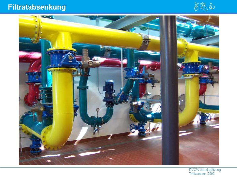 ABC DVGW Arbeitssitzung Trinkwasser 2005 Filtratabsenkung