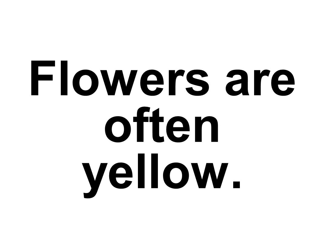 Flowers are often yellow.