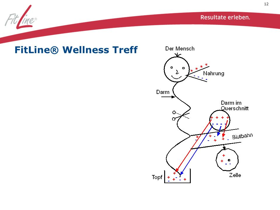 12 FitLine® Wellness Treff