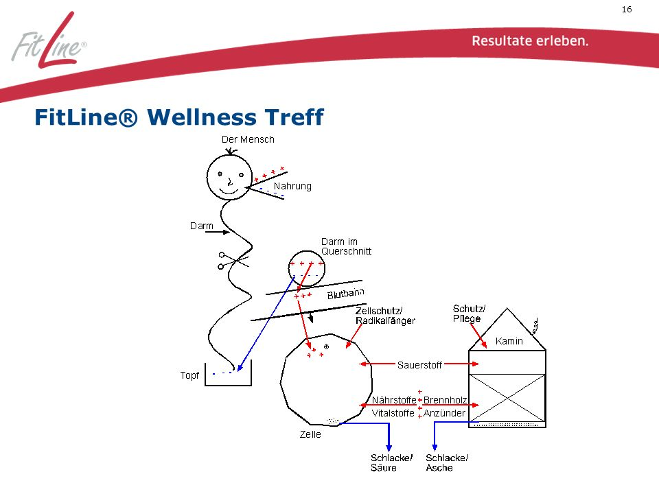 16 FitLine® Wellness Treff