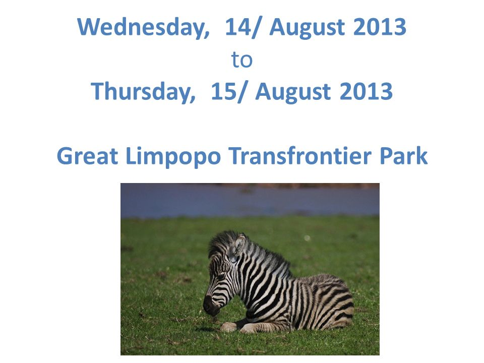 Wednesday, 14/ August 2013 to Thursday, 15/ August 2013 Great Limpopo Transfrontier Park