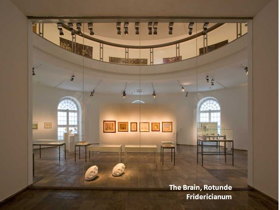 The Brain, Rotunde Fridericianum