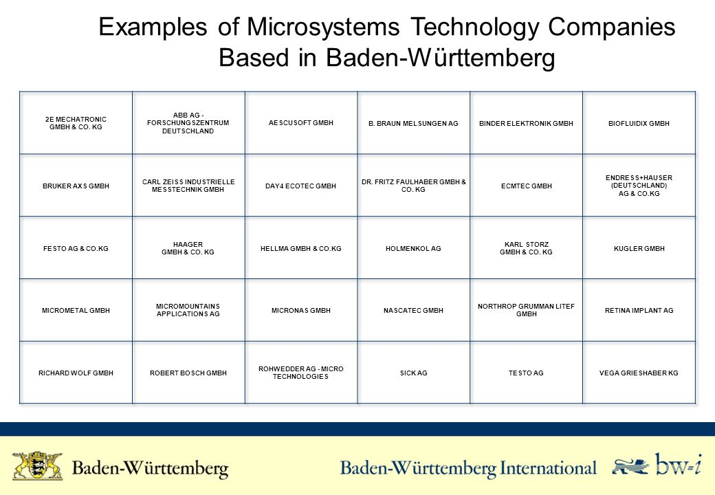 Examples of Microsystems Technology Companies Based in Baden-Württemberg