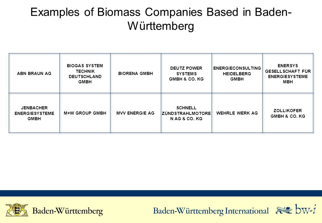 Examples of Biomass Companies Based in Baden- Württemberg