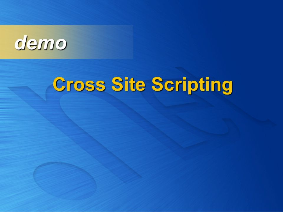 Cross Site Scripting demo demo
