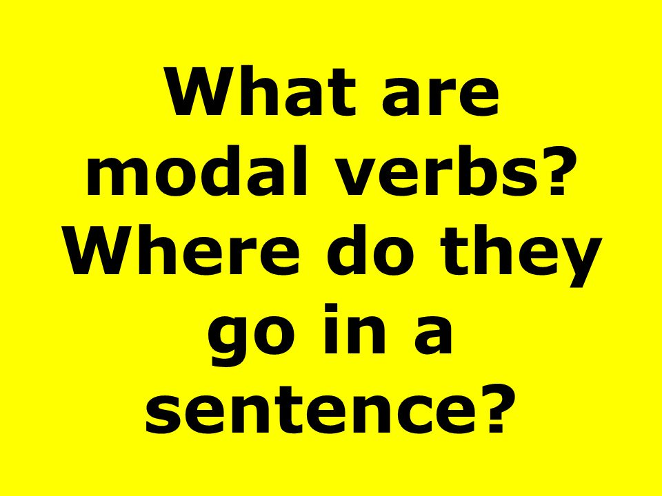 What are modal verbs Where do they go in a sentence