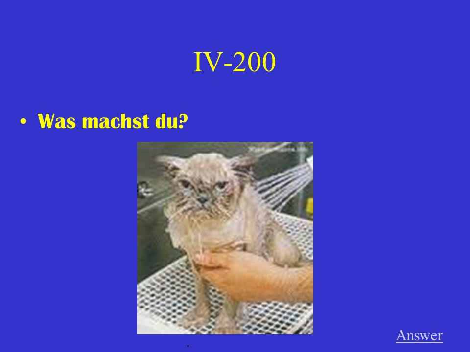 IV-100 Was macht Thorsten Answer.