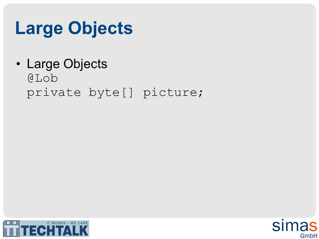 Large Objects Large private byte[] picture;