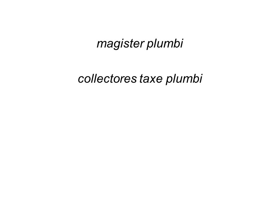 magister plumbi collectores taxe plumbi