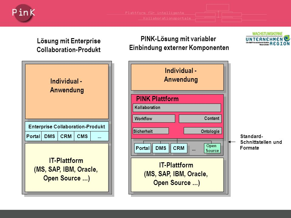 IT-Plattform (MS, SAP, IBM, Oracle, Open Source...) Individual - Anwendung Enterprise Collaboration-Produkt Portal DMS...