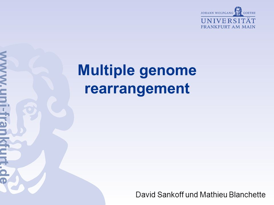 Multiple genome rearrangement David Sankoff und Mathieu Blanchette