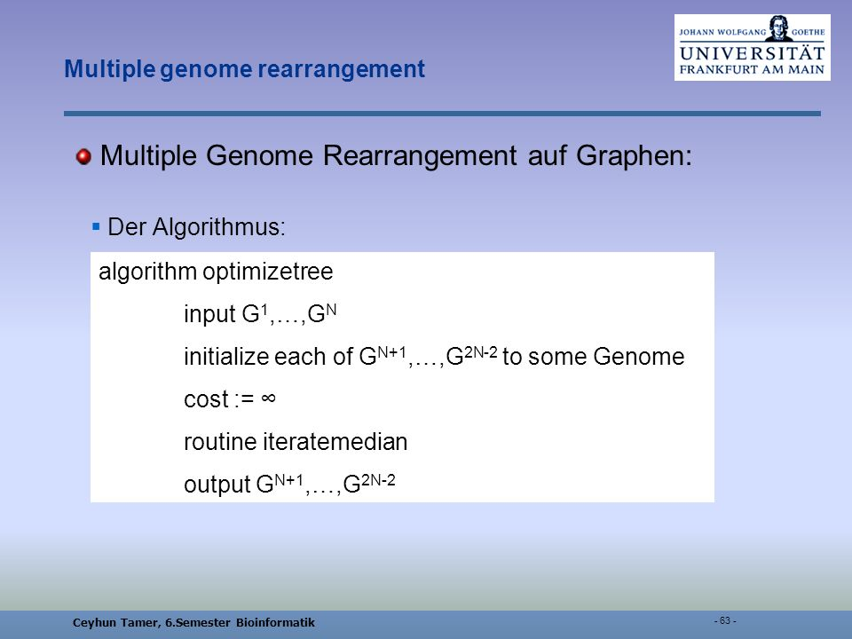 Ceyhun Tamer, 6.Semester Bioinformatik Multiple genome rearrangement Multiple Genome Rearrangement auf Graphen: Der Algorithmus: algorithm optimizetree input G 1,…,G N initialize each of G N+1,…,G 2N-2 to some Genome cost := routine iteratemedian output G N+1,…,G 2N-2