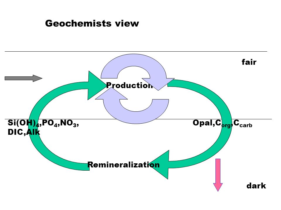 Production Remineralization Opal,C org,C carb Si(OH) 4,PO 4,NO 3, DIC,Alk Geochemists view fair dark