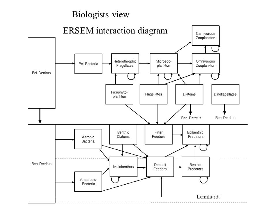 ERSEM interaction diagram Biologists view Lennhardt
