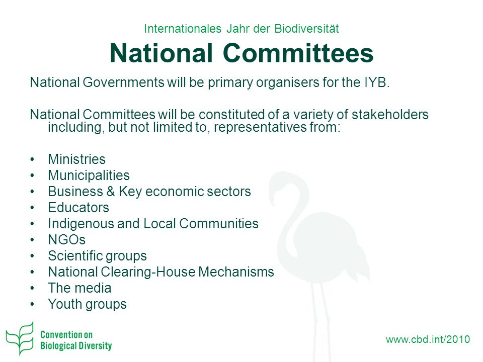 Internationales Jahr der Biodiversität National Committees National Governments will be primary organisers for the IYB.
