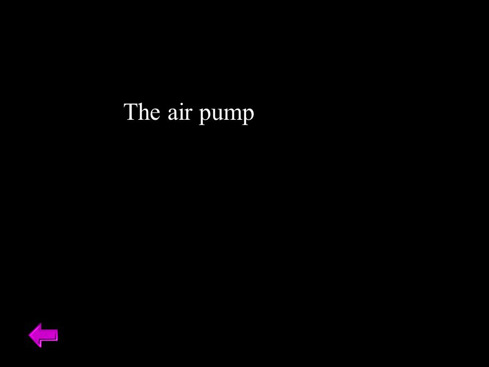 The air pump