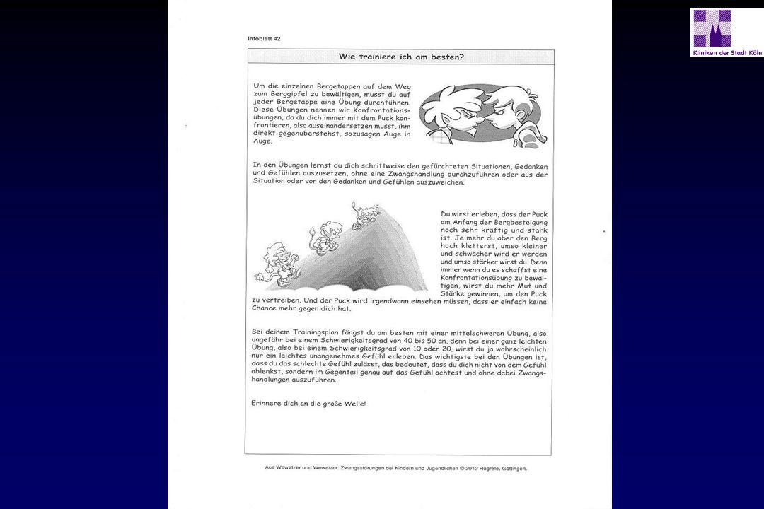 Therapiemanual: 1. Theoretischer Hintergrund - ppt herunterladen