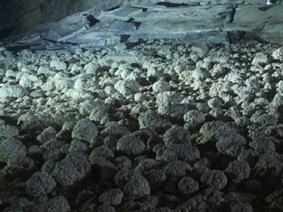 National Geographic sent a team to document the cave in 2010.