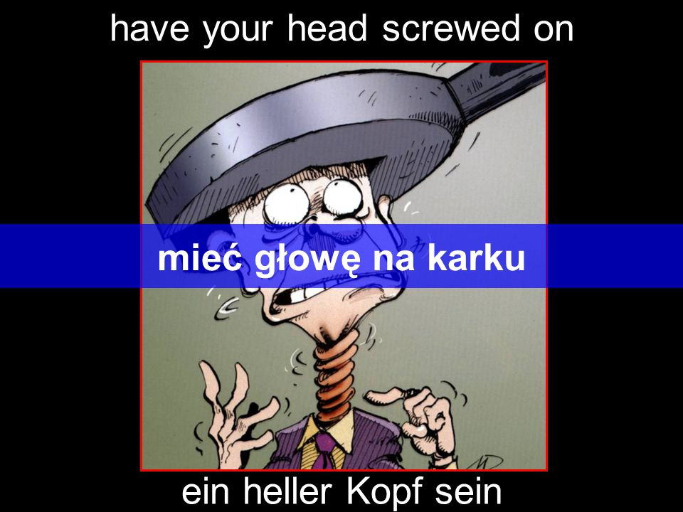 have your head screwed on mieć głowę na karku ein heller Kopf sein