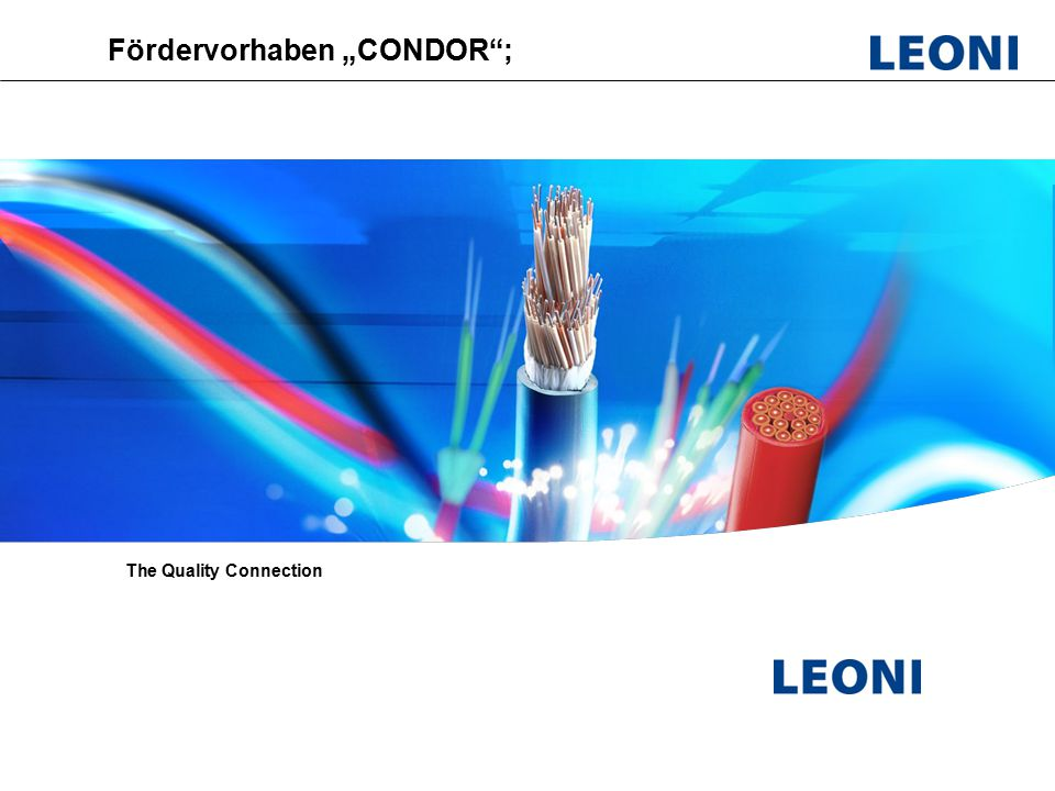 "Leoni Fiber Optics; PL Optical switches; Vorbereitungsmeeeting CONDOR, HHI ; September 2009 Fördervorhaben ""CONDOR ; The Quality Connection"