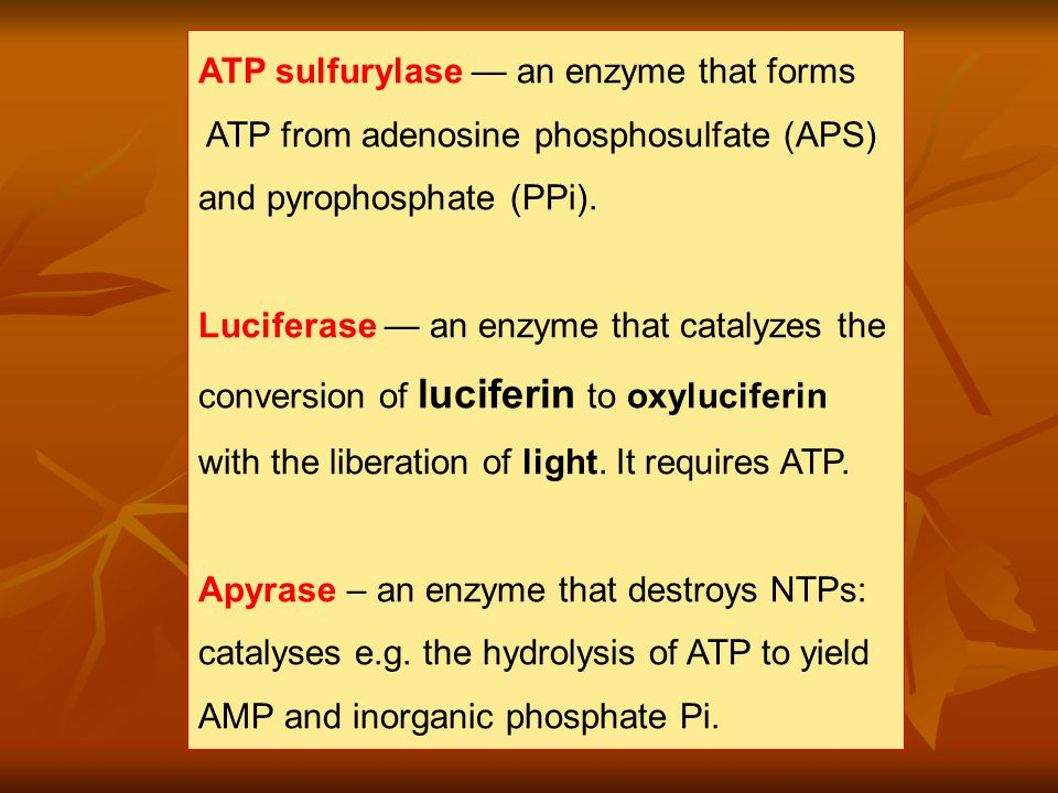 ATP sulfurylase — an enzyme that forms ATP from adenosine phosphosulfate (APS) and pyrophosphate (PPi).