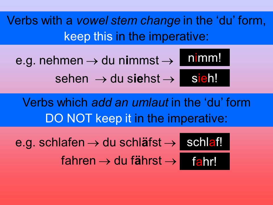 Verbs with a vowel stem change in the du form, e.g.