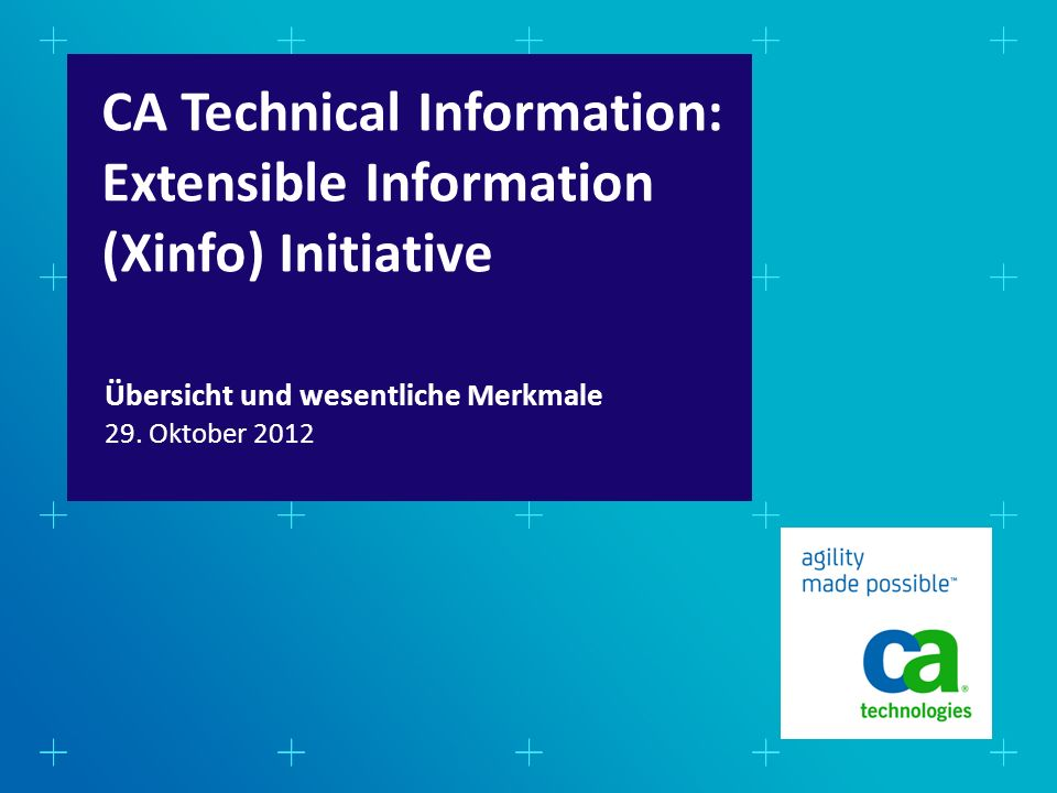 CA Technical Information: Extensible Information (Xinfo) Initiative 29.